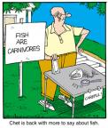 Comic Strip Jerry Van Amerongen  Ballard Street 2012-09-11 fish