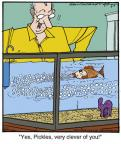 Comic Strip Jerry Van Amerongen  Ballard Street 2013-03-07 fish