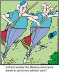Comic Strip Jerry Van Amerongen  Ballard Street 2015-07-06 lawn care