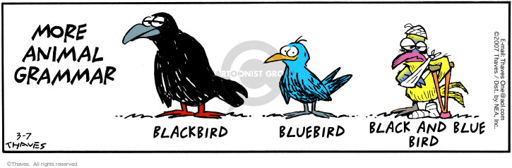 More Animal Grammar.  Blackbird.  Bluebird.  Black and blue bird.