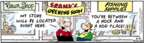 Comic Strip Bob Thaves Tom Thaves  Frank and Ernest 2007-06-21 hard
