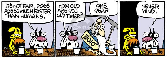 Its not fair, dogs age so much faster than humans. How old are you old timer? One year. 2010. Never mind.