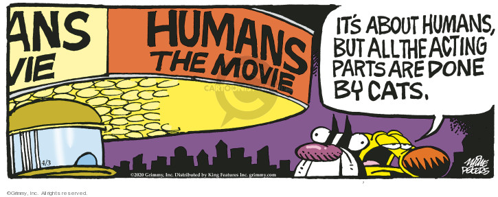 Human. The Movie. Its about humans, but all acting parts are done by cats.