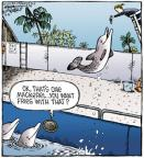 Comic Strip Dave Coverly  Speed Bump 2012-03-31 fish