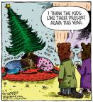 Comic Strip Dave Coverly  Speed Bump 2012-12-25 gift