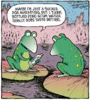 Comic Strip Dave Coverly  Speed Bump 2013-01-25 pond
