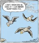 Comic Strip Dave Coverly  Speed Bump 2013-03-04 bird