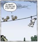 Comic Strip Dave Coverly  Speed Bump 2013-05-13 squirrel