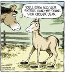 Comic Strip Dave Coverly  Speed Bump 2013-11-01 horse shoe