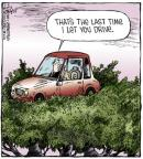 Comic Strip Dave Coverly  Speed Bump 2014-03-06 treetop