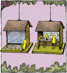 Comic Strip Dave Coverly  Speed Bump 2014-07-25 bird