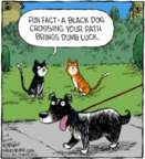 Comic Strip Dave Coverly  Speed Bump 2019-01-14 dog and cat