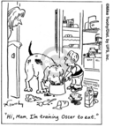 Comic Strip Mike Twohy  That's Life 2007-10-09 dog training